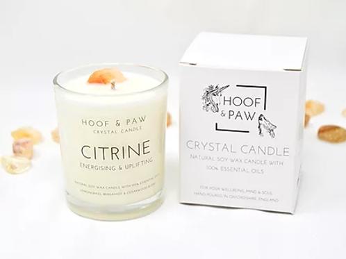 Hoof & Paw citrine candle