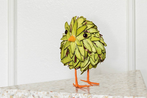 Green wood chick