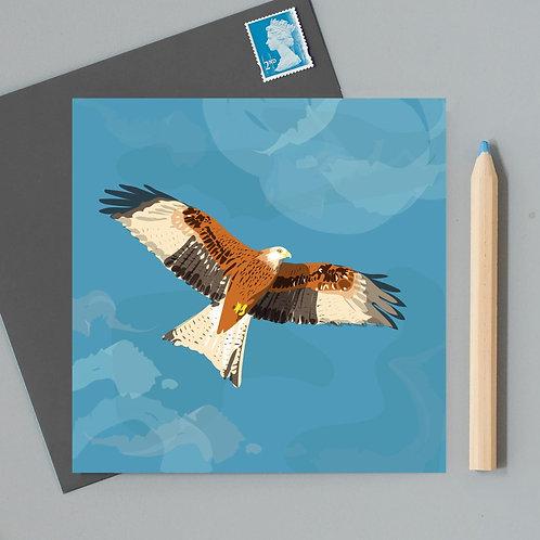 RSPB red kite card