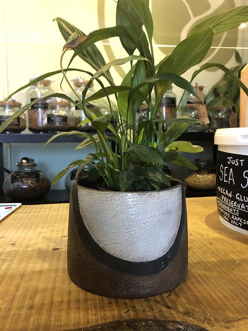 Large raku plant pot