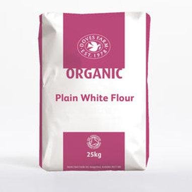 Organic plain flour (100g)