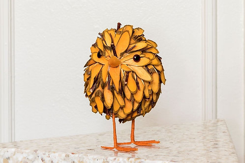 Orange wood chick