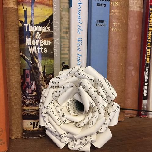 White rose book art