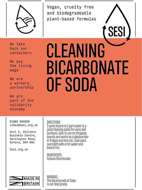 Sodium bicarbonate (100g)