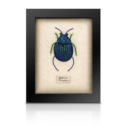 Beaded fat blue beetle