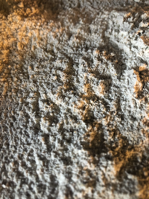 Organic wholemeal rye flour (100g)