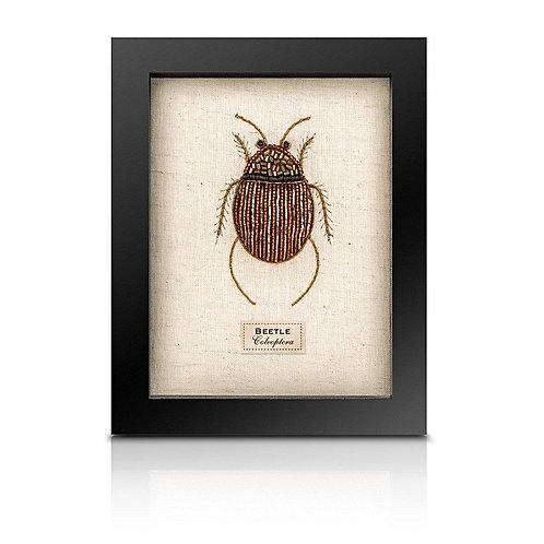 Beaded fat beetle