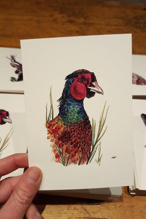 """Pheasant"" postcard"