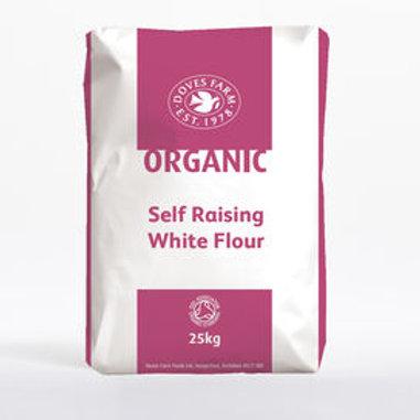 Organic self-raising flour (100g)