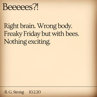 Beeeees?!
