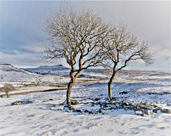 yorkshire_dales_winter_photography_works
