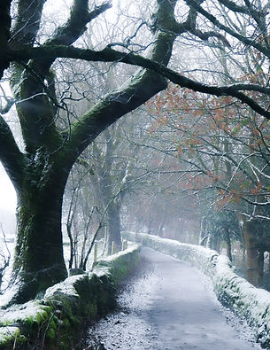 First Snow in Haworth Dec 4th 2020-11.jp
