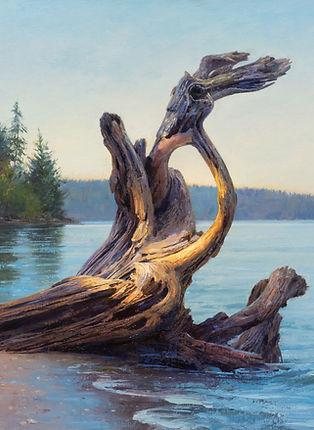Langley Beach Driftwood 4.jpg