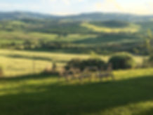 Rolling hills of Val D'Orcia.jpg