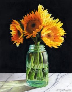 Sunflowers in Mason Jar