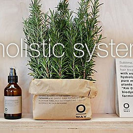 Oway Holistic System.
