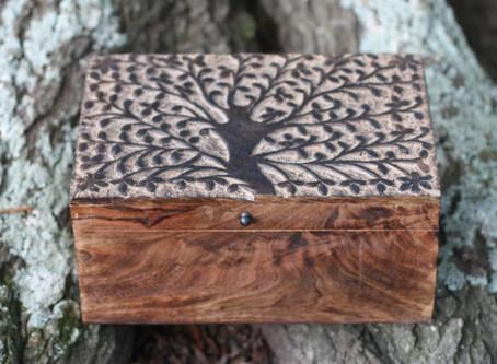 Why an Oak Tree?