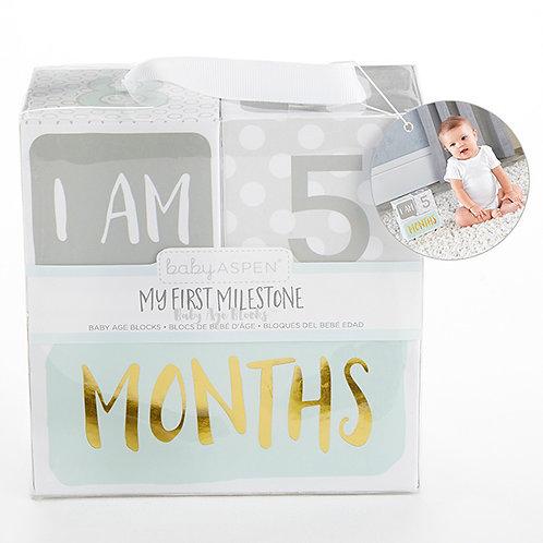 My First Milestone Baby Age Blocks by Baby Aspen