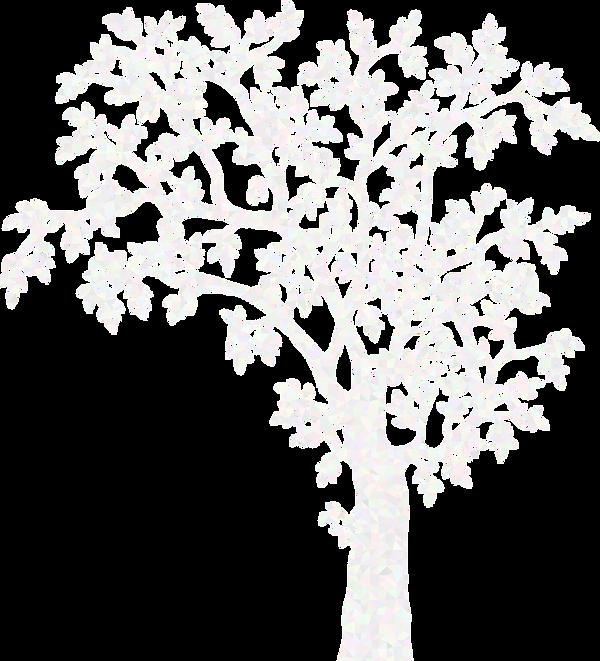 tree-1325107 - Image parGordon Johnson d