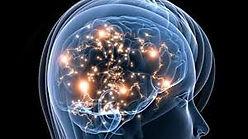 Cerveau inconscient référencement dans Google Images