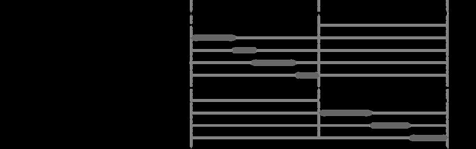 Research Activity Timeline Illustration