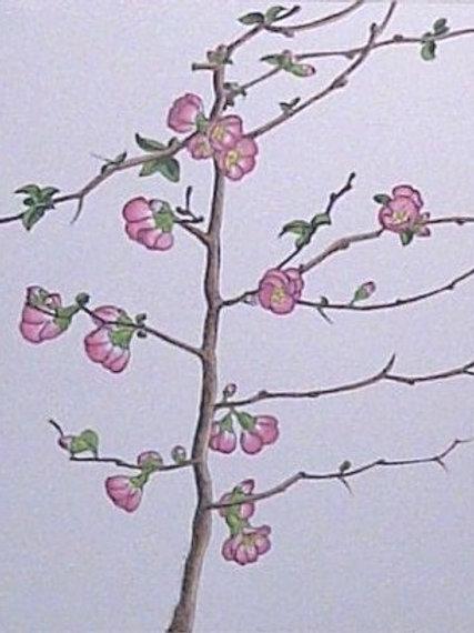 """""""Spring Opening"""" Linda Lynton"""