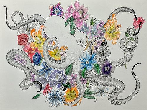 """Octopuses Garden"" Carlyn Peters"