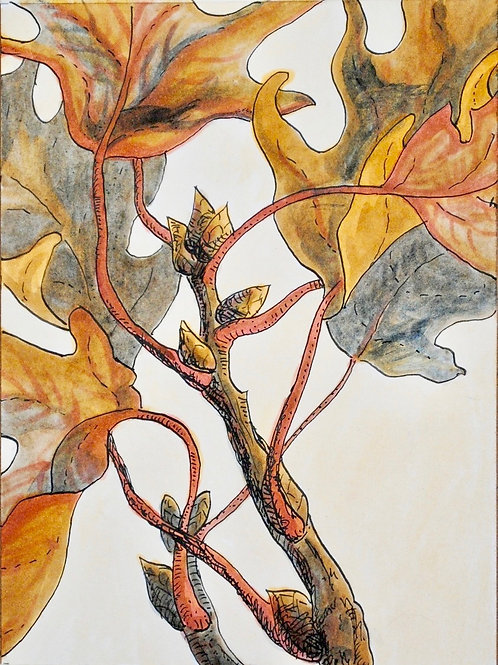 """Oak Leaves"" Linda Lynton"