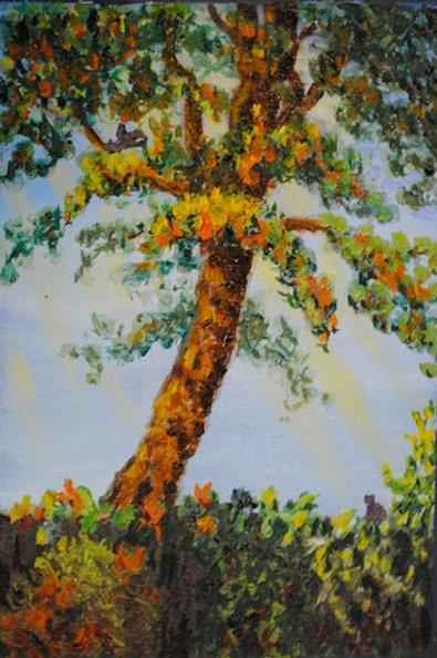 """Over the Fence: The Tree Next Door"" Linda Lynton"