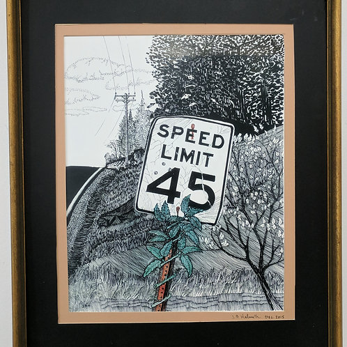 """45 MPH Sign"" Jeffrey Helmuth"