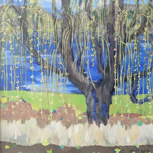 """Willow, Early Spring"" Ellen McKay"