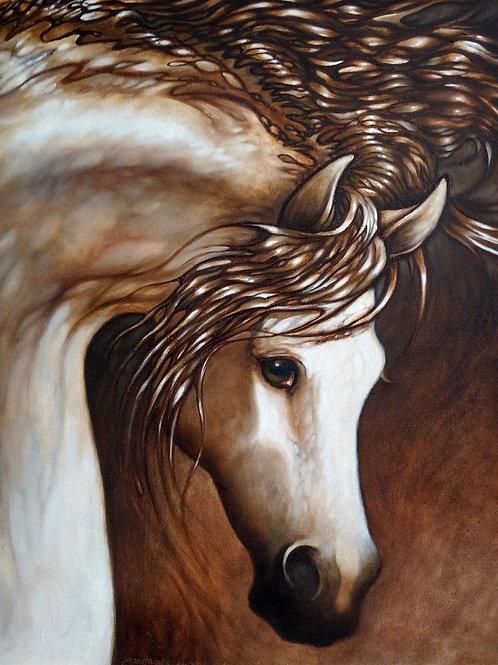 """""""Arabian Portrait"""" Jean Haines"""