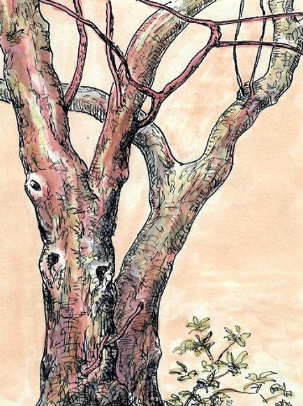 """Crabapple Tree"" Linda Lynton"