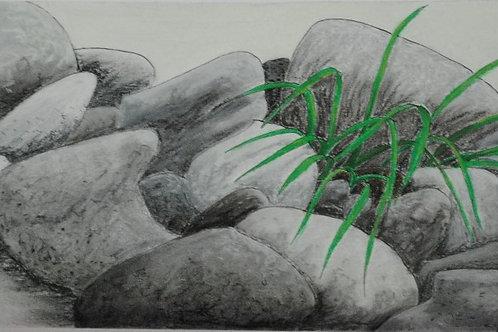 """Stones and Grass"" Linda Lynton"