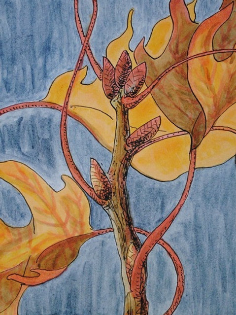 """Oak Leaves 2"" Linda Lynton"