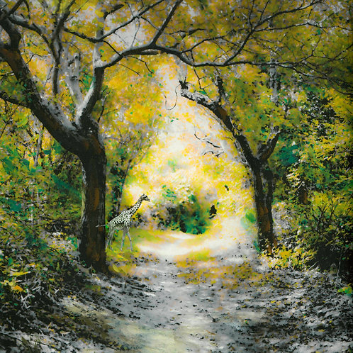 """""""pathway to dreams"""" jd weiss"""