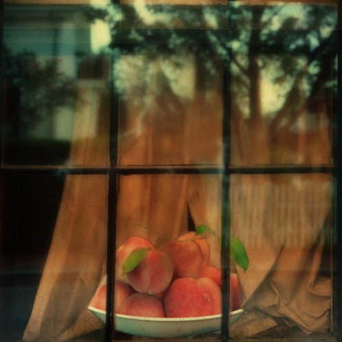 """ripening in the window light"" jd weiss"