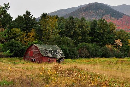 """The Old Adirondack Barn"" Nancy de Flon"