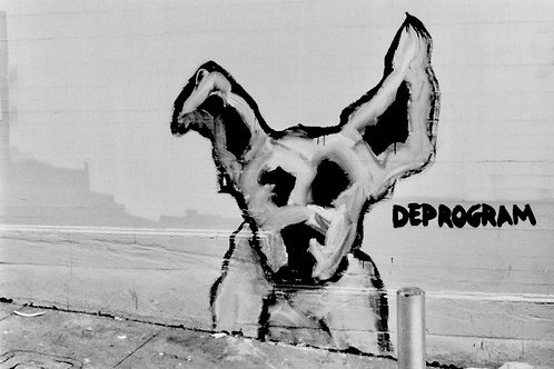 """Graffiti Dogs, Fresno Alley, 1993 from Wall Dogs"" (unframed) Arabella Colton"