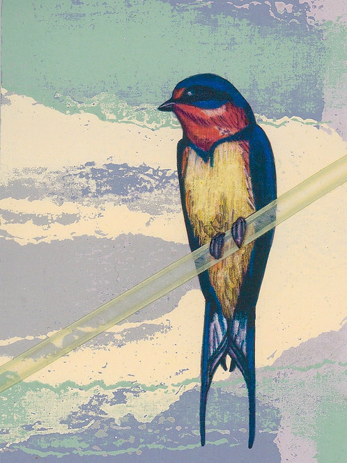 """""""Swallow"""" Marilyn Rowley"""