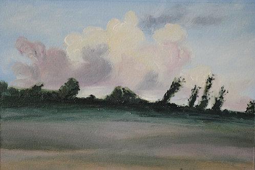 """""""Windswept"""" Linda Lynton"""