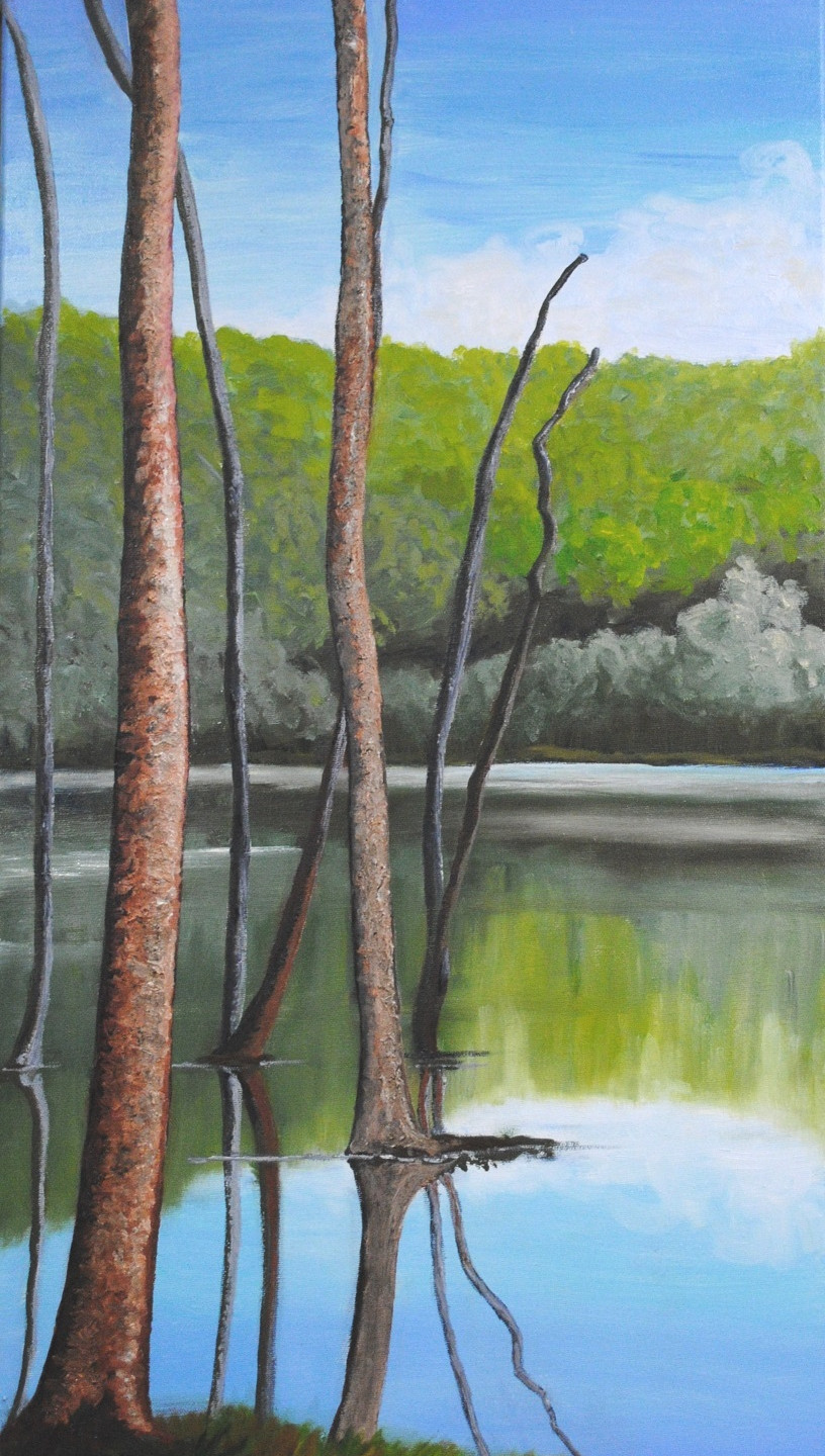LyntonL Sawkill Echo Lake 30x15 in oil c