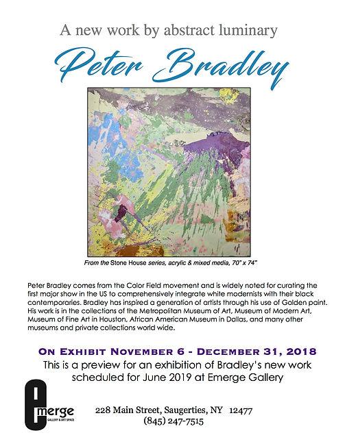 Emerge Gallery_ PETER BRADLEY preview fl