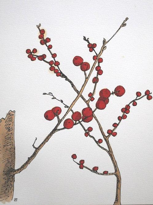 """""""Red Berries 2"""" Linda Lynton"""