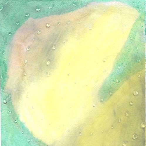 """Paleo Dreams"" Linda Lynton"