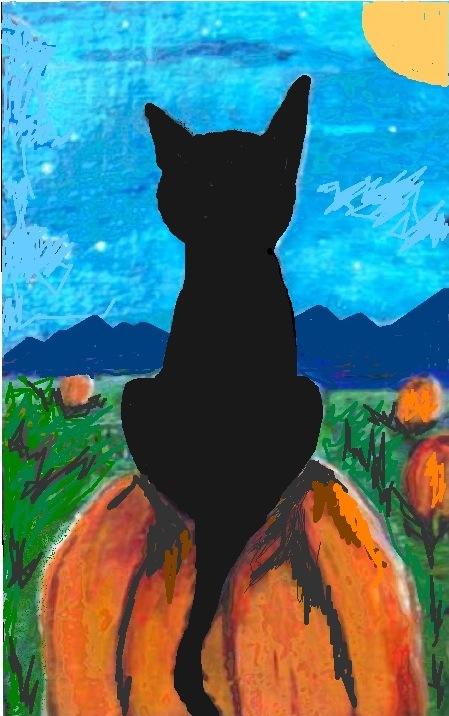 cat-on-pumpkin-patch