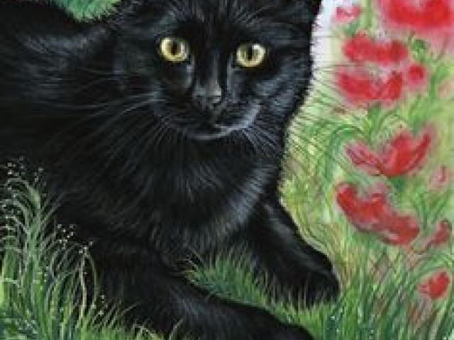 drawn-black-cat-acrylic-art-514680-56546