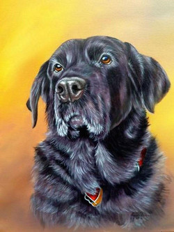 how-to-paint-dog-acrylics-image19