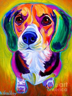 animals-images-dog-portraits-doggies-on-