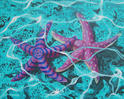 starfish-in-love-tommy-midyette